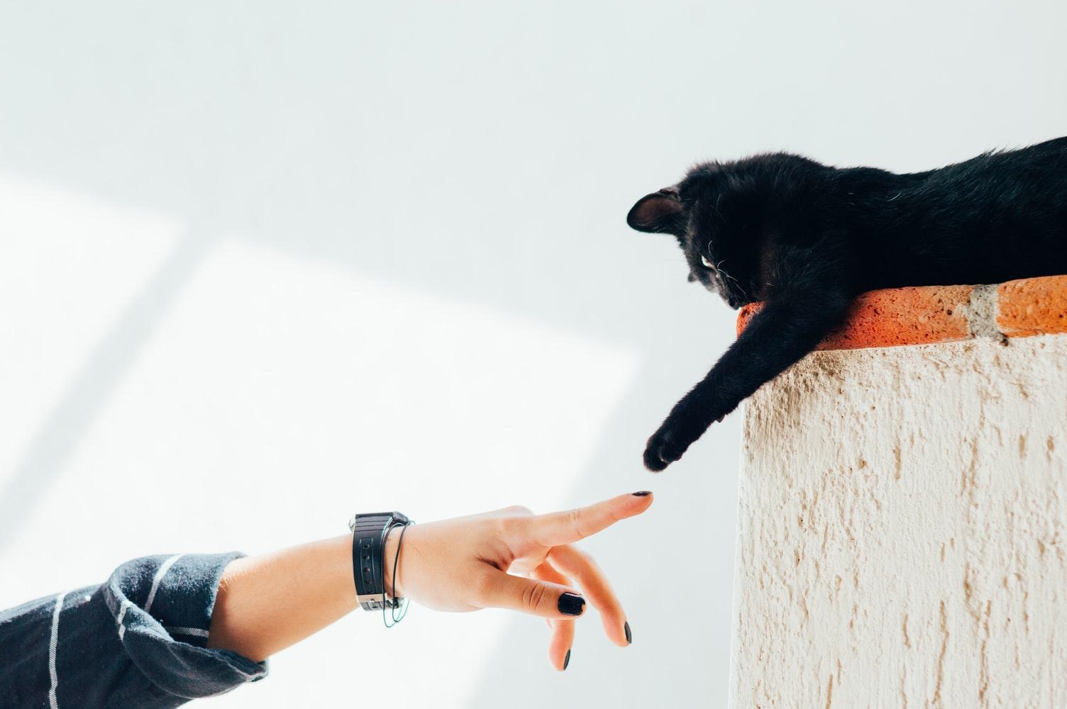 touchpoints im marketing